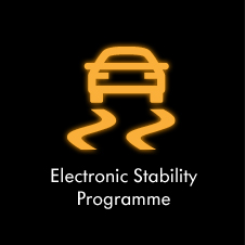 Electronic Stability Programme Warning Light | Yellow