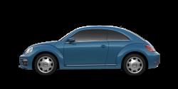 beetle-pa